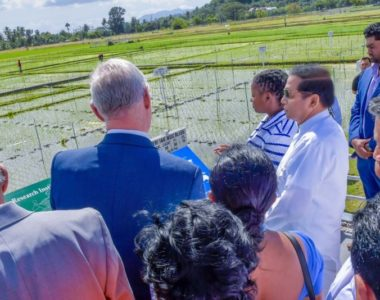 Sri Lanka Signs a Five Year Action Plan with IRRI