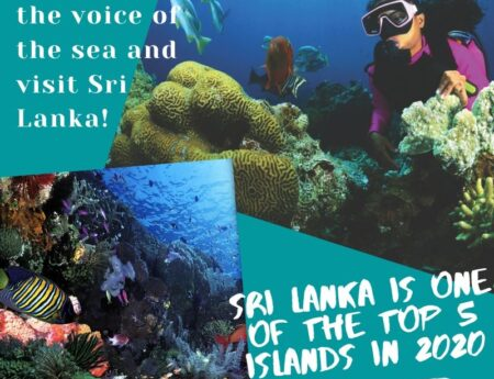 Sri Lanka is one of the top 5 islands in 2020!