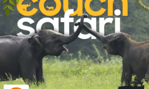 "Sri Lanka Tourism's Wildlife Streaming event ""Couch Safari' – A resounding success"